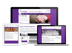 Cygnus Change Management Consultancy website, web design & development by Exeter's One Bright Spark