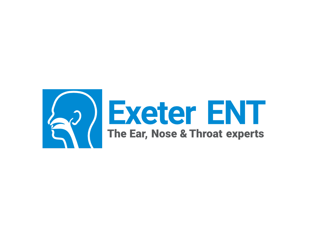 Exeter ENT Logo - Client of Exeter website & logo designer One Bright Spark