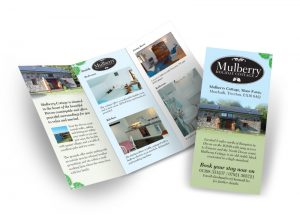Mulberry holiday cottage flyer graphic design & print by One Bright Spark of Exeter, Devon