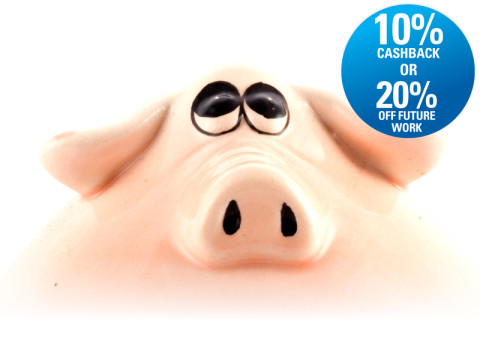 Recommend a friend and fill your piggy bank