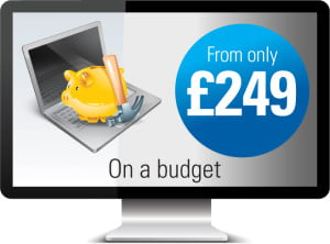 One Bright Spark on a budget websites from £249