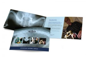 Seymour Vets Totnes booklet graphic design & print by One Bright Spark of Exeter, Devon