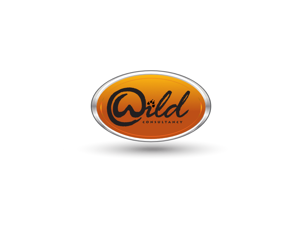 Wild Consultancy Logo - Client of Exeter website & logo designer One Bright Spark