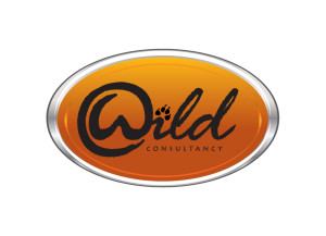 Wild Consultancy logo brand Identity by One Bright Spark of Exeter, Devon