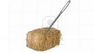 Image of needle in a haystack for one Bright Spark's Search Engine Optimisation Service (SEO), in Exeter, Devon.